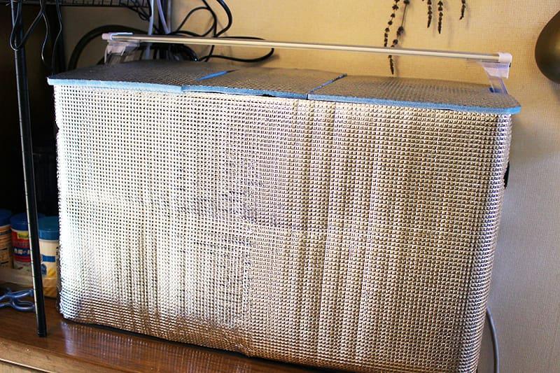 アルミ箔シートで覆っているグッピー水槽