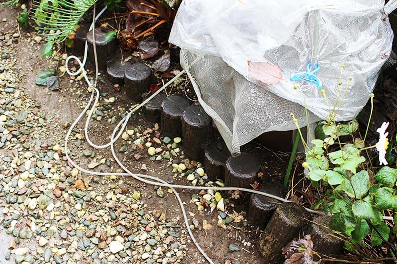 屋外メダカ水槽で使用中のエアーホース