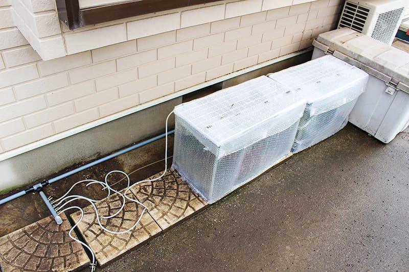 メダカ水槽用エアー配管で繋げた屋外メダカ水槽